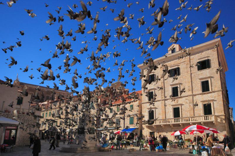 U Dubrovniku ostvareno tromilijunto noćenje 9 dana ranije nego lani