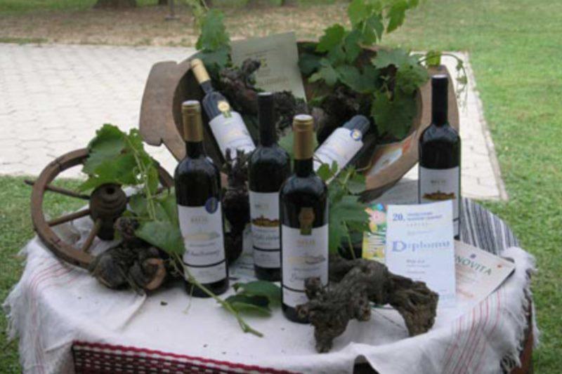 Festa Dubrovnik - Festa od vina