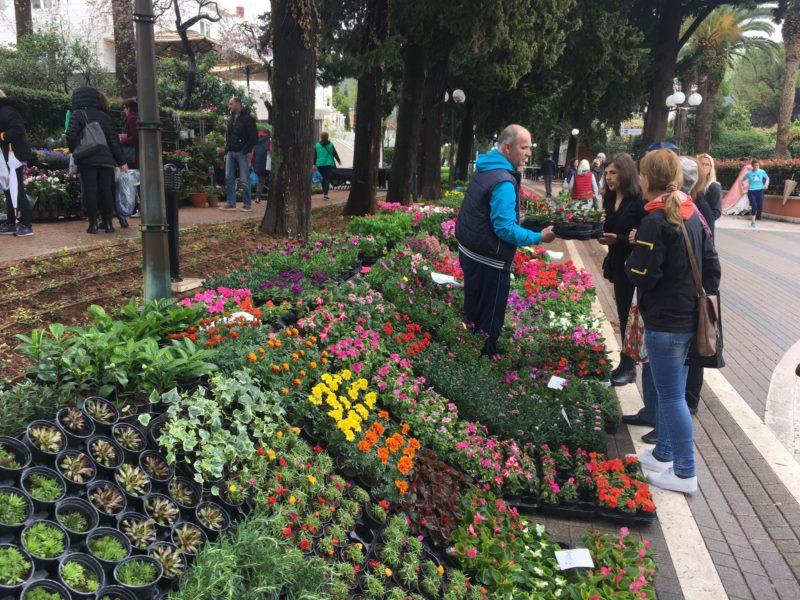 Održan drugi po redu sajam i prodaja cvijeća u Lapadu