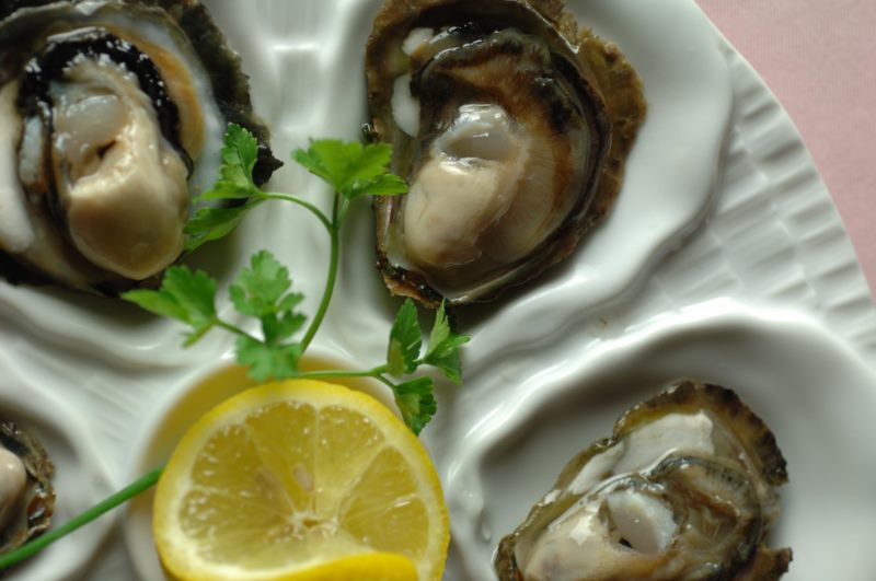 The Story of Oysters
