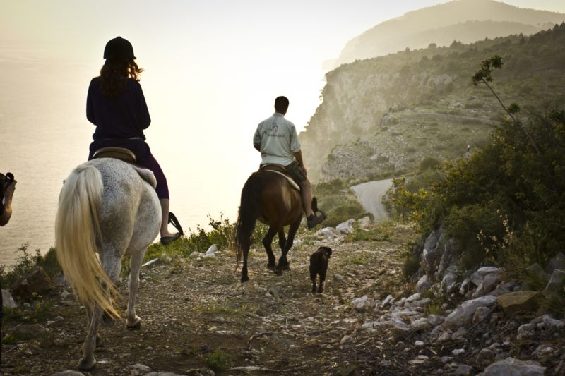 Kojan Koral Horseback Riding Center