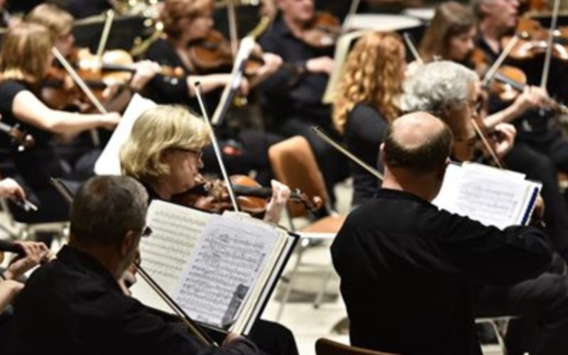 DSO STRING CHAMBER ORCHESTRA-DSO STRING QUARTET